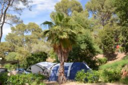 emplacement-tente-camping-sauvage-luxe-camp du domaine