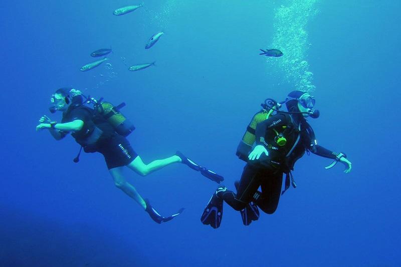 plongée-mer-vagues-été-poisson-sport-activité-nautique-palmes-masque-camp du domaine