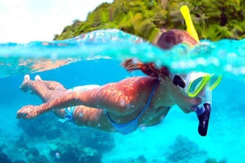 snorkeling-mer-vagues-été-poisson-sport-activité-nautique-palmes-masque-camp du domaine